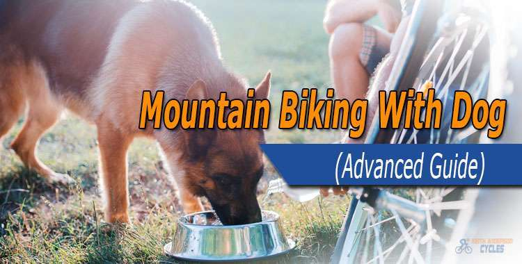 mountain biking with dog