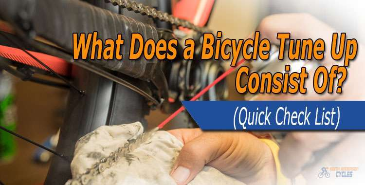 What does a bicycle tune up consist of?